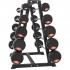 Rack de rangement pour 10 haltères longues de Gorilla Sports