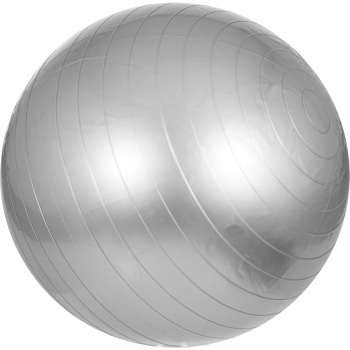 Swiss ball - Ballon de gym 65cm Gris