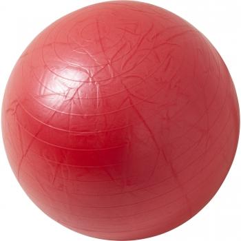 Swiss ball - Ballon de gym ROUGE / 55cm