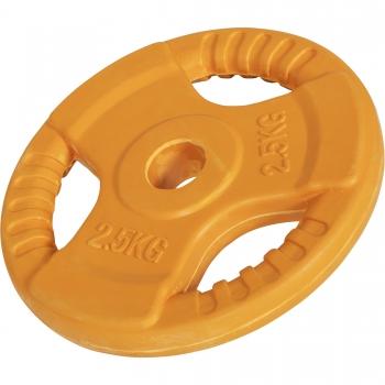 Disque de 2,5kg avec poignée 31mm en fonte revêtement caoutchouc