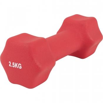 Paire d'Haltères Fitness en néoprène 5 KG (2x2.5)