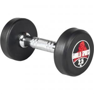 2,5 kg Dumbbell haltère poids